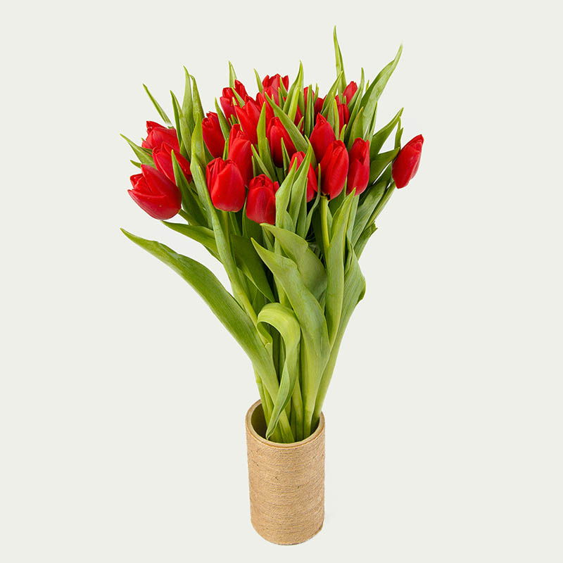 """Bouquet of 25 Tulips """"Red Sparkles"""""""