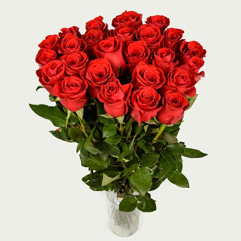 """Bouquet """"Bunch of 25 roses Freedom """"Bordeaux"""""""
