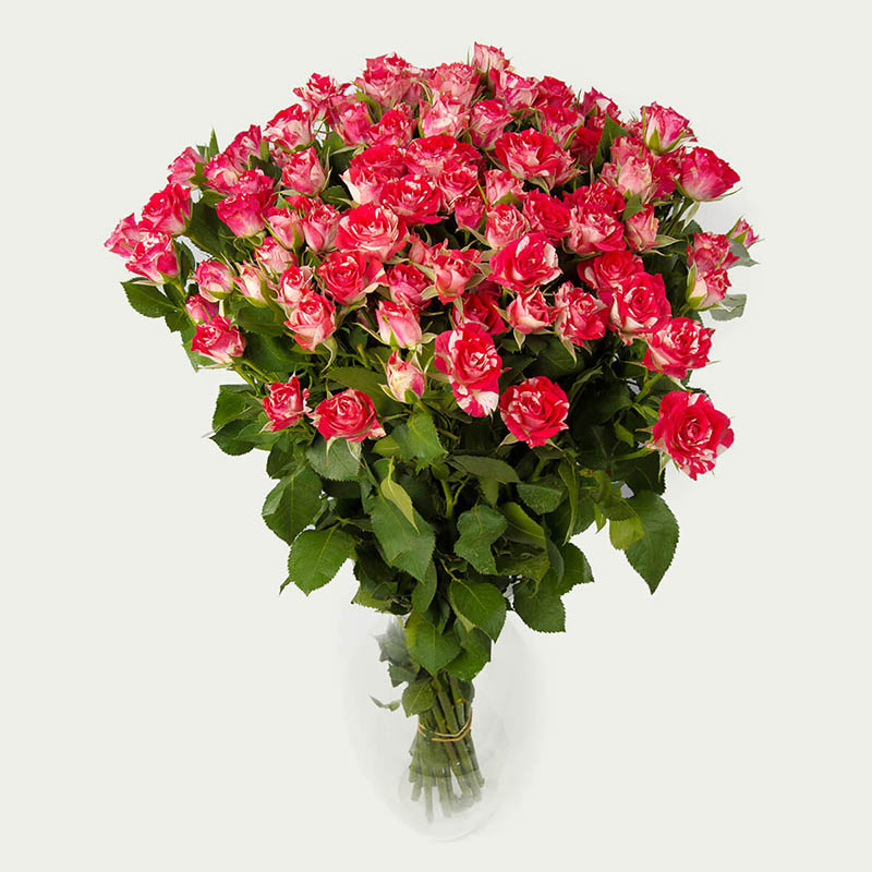 """Bouquet """"Bunch of 19 branched roses Fireworks of pink color """"Echoing of Fireworks"""""""