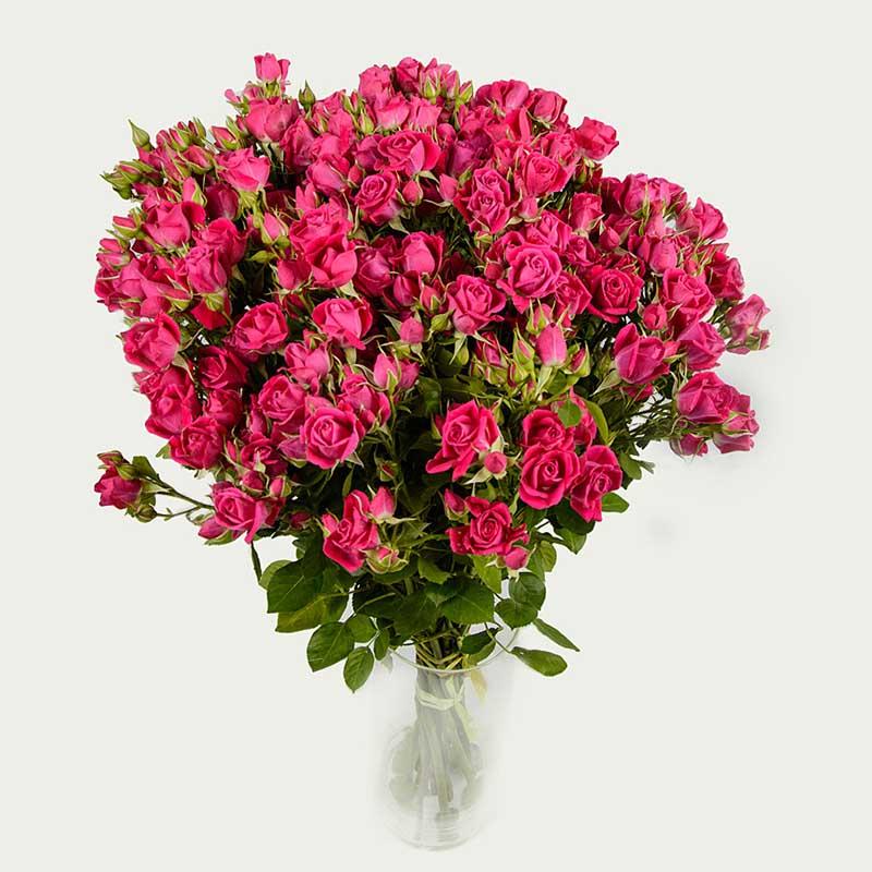 """Букет """"Оберемок із 19 галузкових троянд """"Малиновий вечір"""""""
